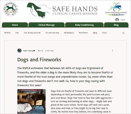 Portfolio Safe Hands Clinical Canine Massage